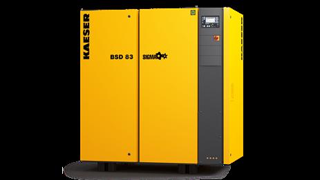 Компрессор BSD 65 Kaeser Kompressoren - фото 6668